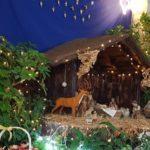 Retransmisja Mszy Świętej z Limassol